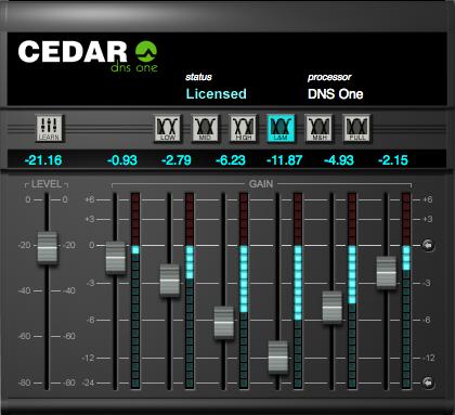CEDAR Studio DNS One